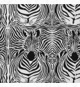 Zebra | 95%CO / 5%EL